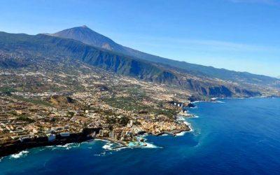 Doce denunciados tras el robo de 1.800 kilos de aguacates en el Norte de Tenerife